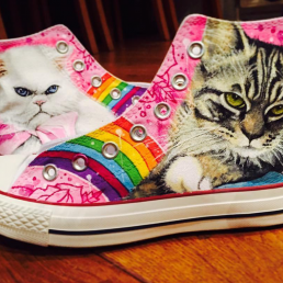 Colourful sneakers with pictures of cats