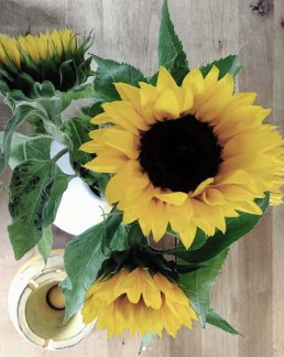 Sunflowers in a vase, from above.